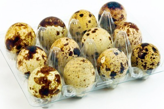 huevos-de-codorniz