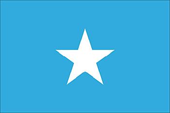 bandera-8