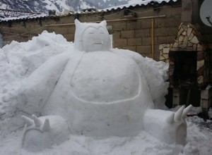 nieve6